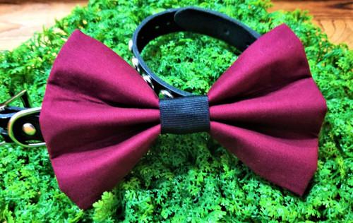 Maroon Pet Bow Tie