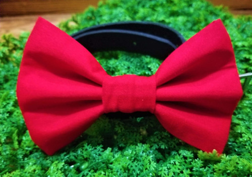 Red Pet Bow Tie