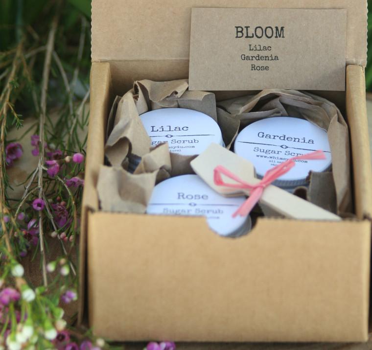 mini sugar scrub gift set