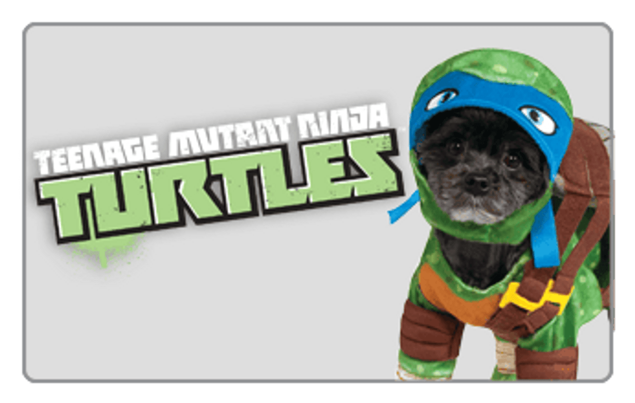 Teenage Mutant Ninja Turtle Pet Costume