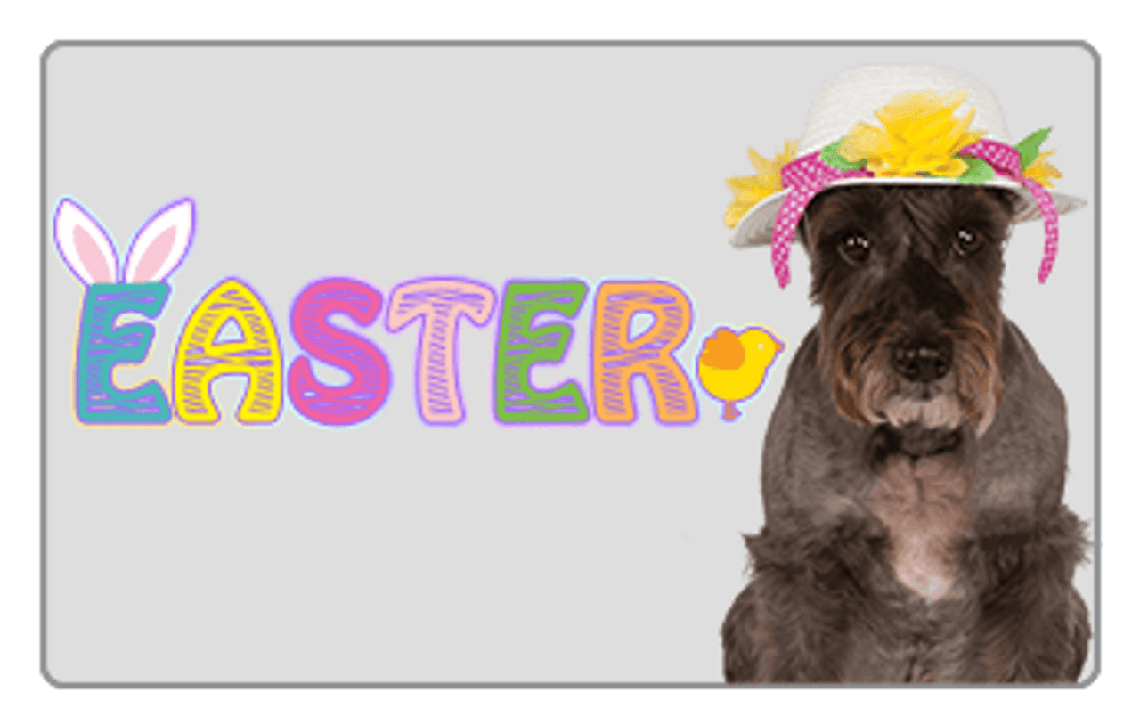 Easter Pet Costume