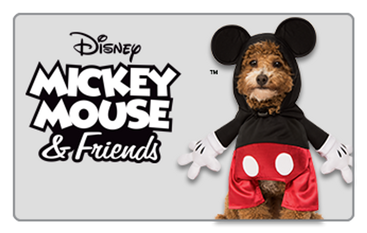 Disney Mickey Mouse and Friends Pet Costume