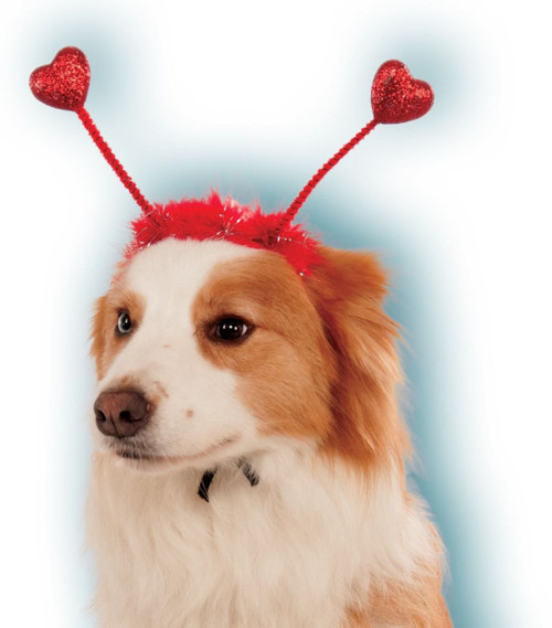 Valentines Day Red Heart Boppers Headband Pet Dog Costume