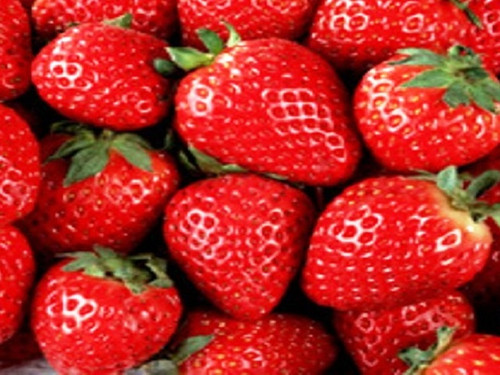 Fresh Strawberry, Bath Gelee, Body Wash, Whipped Soap, Glycerin Soap, Foaming Body Scrub, Sugar Scrub, Aloe Vera Gel, Body Oil, Goat Milk Lotion, Body Butter, Lotion Bar, Natural Vegetable Protein Deodorant, Body Powder, Conditioning Shampoo, Cream Shampoo, Conditioner, Hair Mask, Leave In Detangling Spray, Hair Oil, Argan Shine Serum, Argan Shine Spray, Body Mist, Perfume Oil, Perfume Spray, Solid Perfume, Beard Wash, Beard Oil, Beard Balm, Beard Butter, Shave Soap, Shave Jelly, Aftershave, Room Spray, Linen Spray, Wax Melts, Pet Shampoo, Pet Perfume