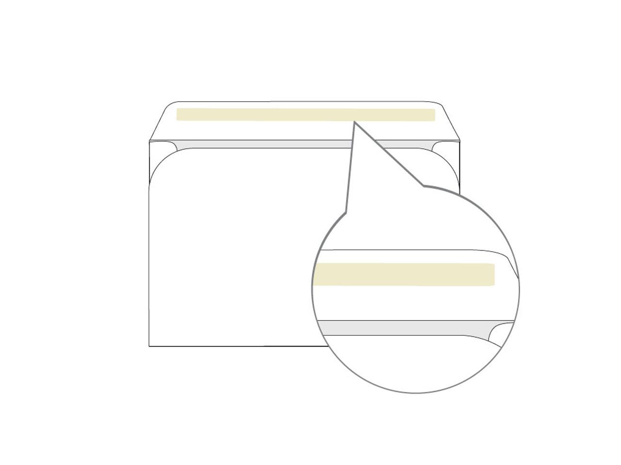 PRINTED - Custom 6x9 Booklet Envelopes - EN1034
