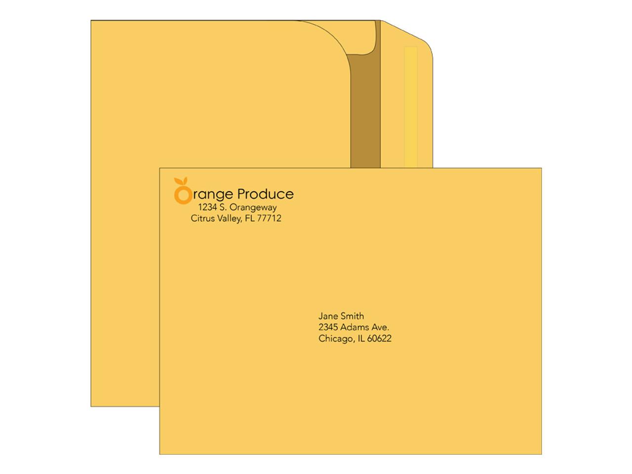 9x12 Printed Mailing Envelopes - EN1099