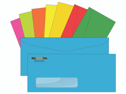 Custom Envelopes with Windows - Bright Colors - EN1101