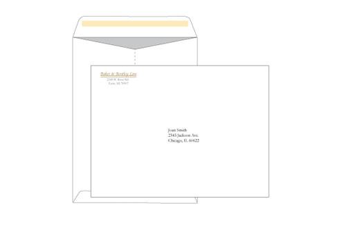 Custom 9x12 Catalog Envelopes - EN1105
