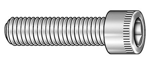 Stainless Socket Head Screw I 1/2-13 X 2-1/2 Stainless Steel Socketketet Head Screw Case 18-8