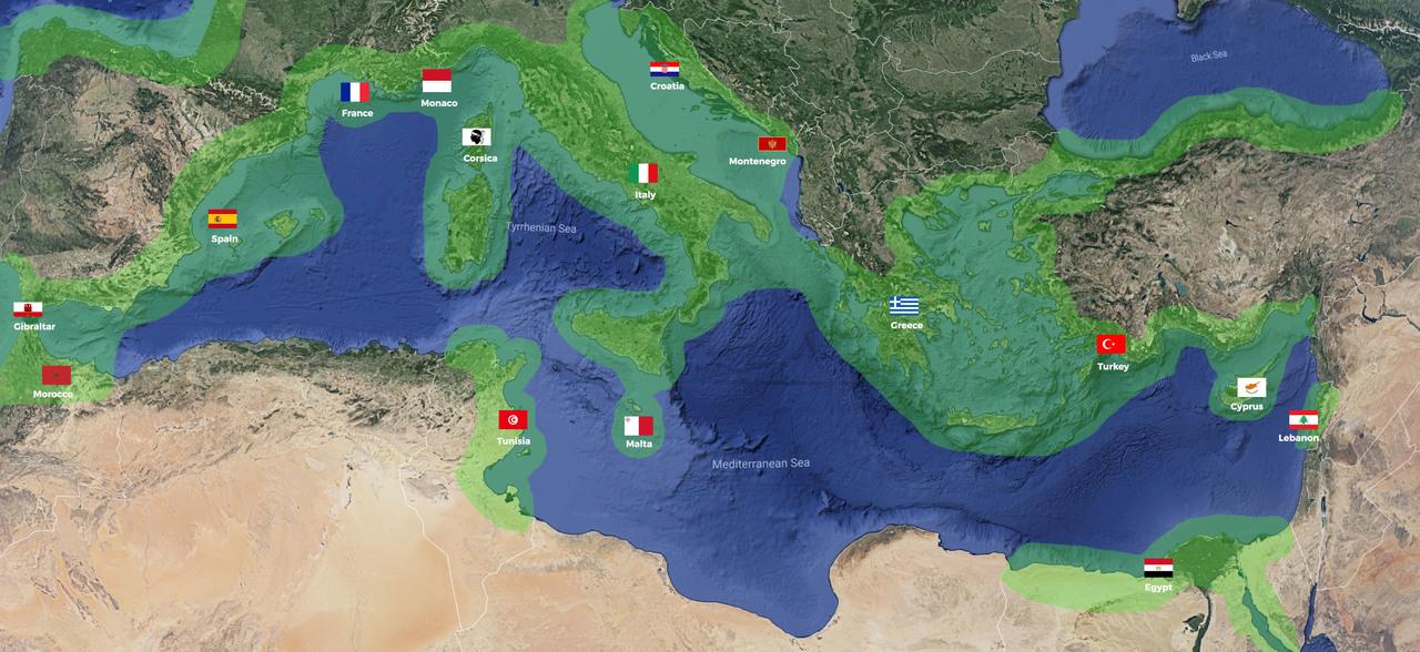 Mediterranean Sea Courtesy Flag Set