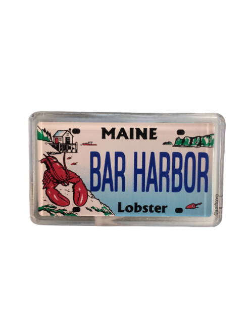 LICENCE PLATE MAGNET