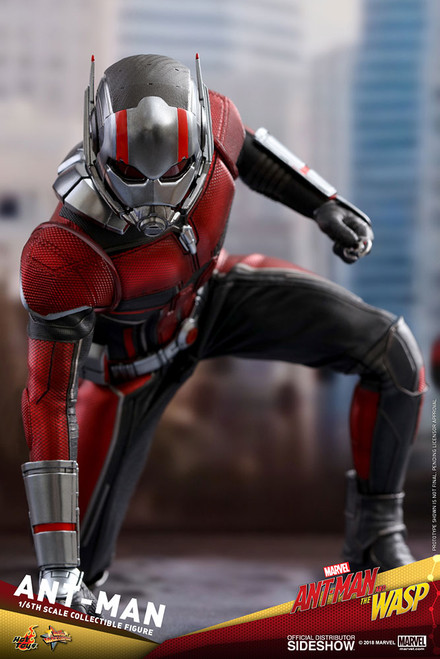 "Figure Marvel - Ant-Man ""Ant-Man and Wasp"" Sixth Scale Figure (HT)"