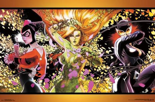 DC Comic Dangerous Ladies Cartoon Poster