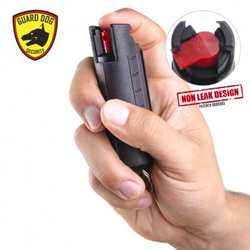 Hard Case Pepper Spray (BLACK)