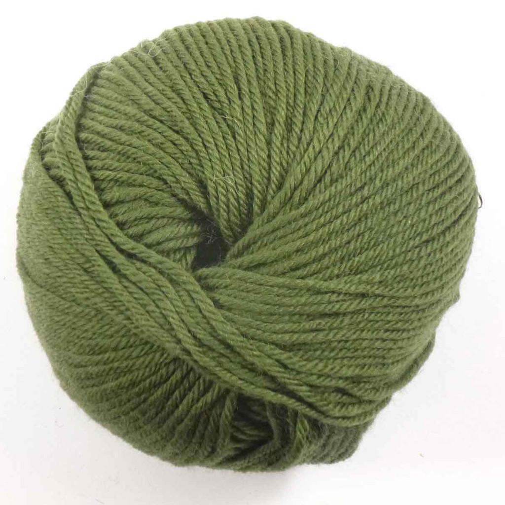 Adriafil Regina DK 100% Merino Wool Yarn, 50g | Various Colours  - 24 Jungle