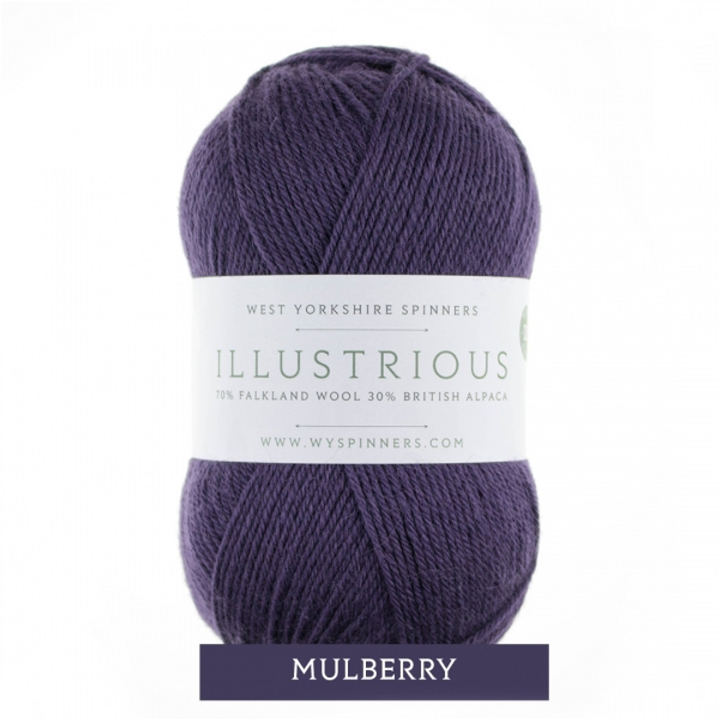 WYS Illustrious DK Knitting Yarn, 100g Balls | 765 Mulberry