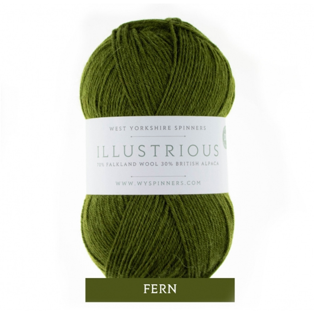 WYS Illustrious DK Knitting Yarn, 100g Balls | 344 Fern