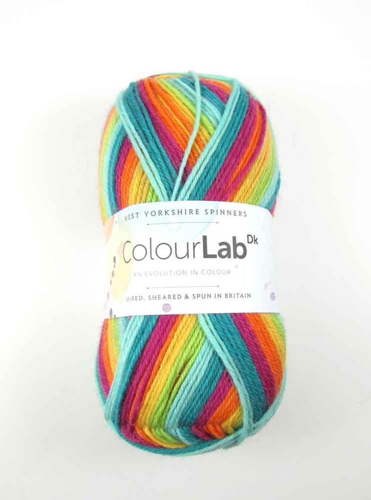 WYS ColourLab Dk | 100g balls | Various Shades 894 Prism Brights
