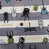 Nakano   Nutex UK Limited   61450 102   Beetles on Grey