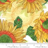 Sunflowers on Cream   Robin Pickens   Solana   48680-11