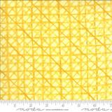 Buttercup Criss Cross   Robin Pickens   Solana   48685-12