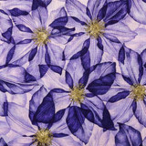 Summers Day | Fabric Freedom | F902-4 | Clematis Purple