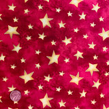 Santa's Journey | SPX Fabrics | 4348-23839 | Half Metre Units - Please see penny for size reference