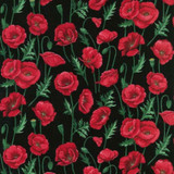 Poppies   Nutex UK Limited   80060 102   Stems Black
