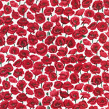 Poppies   Nutex UK Limited   80060 103   Field White