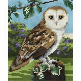 Anchor Tapestry Starter Kit | 18cm x 14cm | Owl | MR951