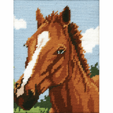 Anchor Tapestry Starter Kit | 18cm x 14cm | Brown Horse | MR929