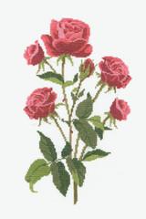 DMC Roses Cross-Stitch Kit | 14 Count