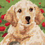 Anchor Tapestry Starter Kit | 18cm x 14cm | Labrador Puppy | MR941