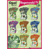 Opal Regenwald 14 (XIV) 4 Ply Multi-Coloured Self Patterning Sock Yarn, 100g Balls | Various Shades - Main Image