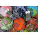 Schoppel Zauberball 4 Ply Multi-Coloured Knitting Yarn, 100g Balls | Various Shades