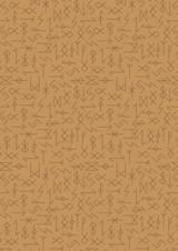Viking Adventure | Lewis and Irene | A380.2 | Runes on Ochre
