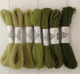 Appletons Crewel Wool in Skeins | Grass Green - Main Image