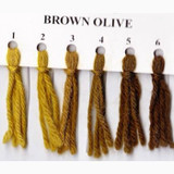 Appletons Crewel Wool in Hanks | Brown Olive - Main Image