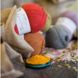 WYS Signature 4 Ply Knitting Yarn, 100g Balls | Spice Rack Range - Main Image