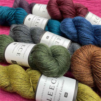 WYS Fleece Bluefaced Leicester DK, 100g Hanks | 8 New Shades - Main Image
