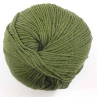 Adriafil Regina DK 100% Merino Wool Yarn, 50g   Various Colours  - 24 Jungle