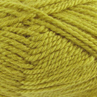 WYS Blue Faced Leicester Aran 50g | Various Shades - Olive