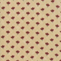 On Meadowlark Pond | Kansas Troubles Quilters | Moda Fabrics | 9593-11