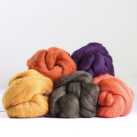 Hawthorn Handmade | Merino Felting Wool Bundle | Autumn