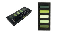 Rembrandt Soft Half Pastels Set of 5 - Lush Greens