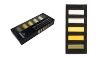 Rembrandt Soft Half Pastels Set of 5 - Warm Yellows