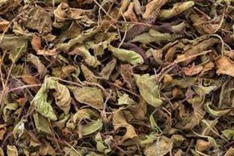 Tulsi Leaves Organic
