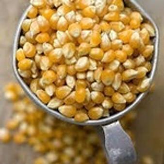 Corn Popping Organic