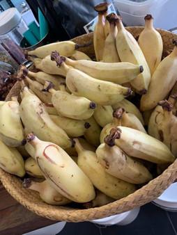 Banana Fresh Organic