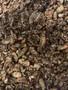 Apple Cinnamon Granola Organic